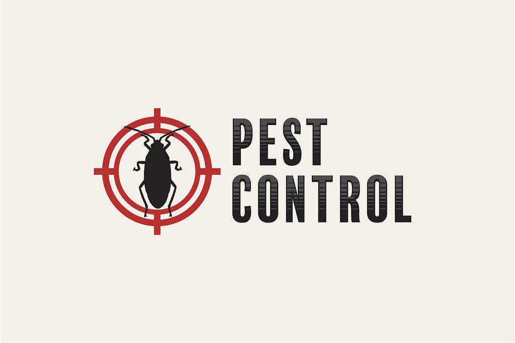 Pest Control Lewes