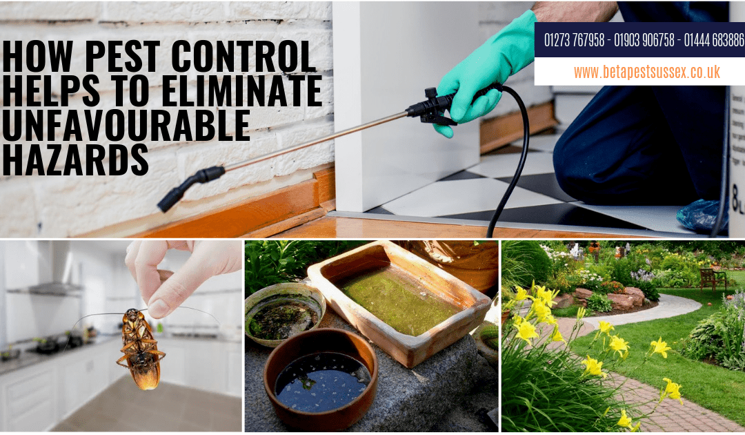 How Pest Control Help To Eliminate Unfavourable Hazards