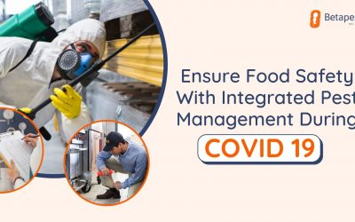 Ensure Food Safety With Integrated Pest Management During COVID 19