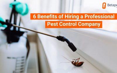 6 Benefits of Hiring a Professional Pest Control Company